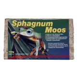 Lucky Reptile Spaghnum Moss brick 100g - 5 Litres